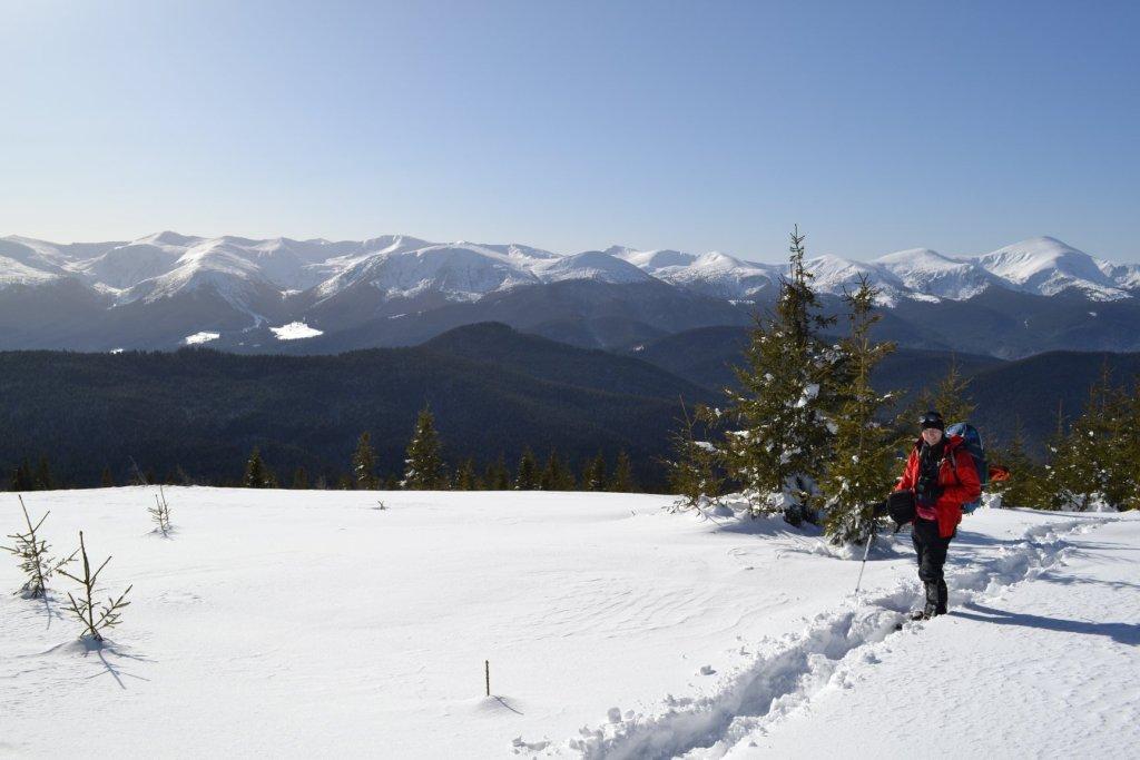Зимова казка: прикарпатці діляться неймовірними фото та відео засніжених Карпат 8