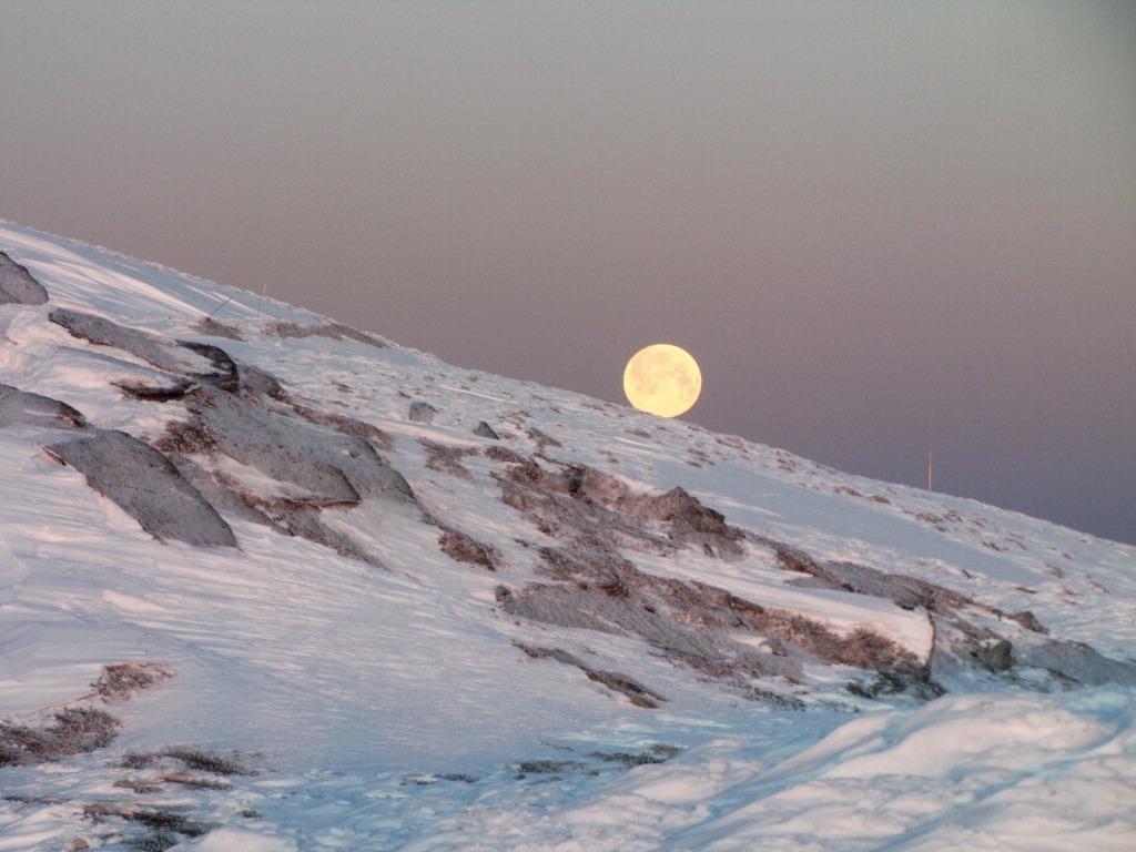 Зимова казка: прикарпатці діляться неймовірними фото та відео засніжених Карпат 40