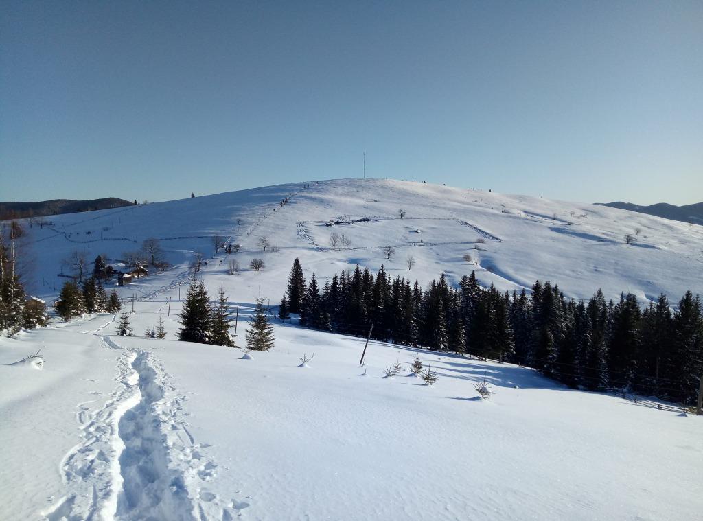 Зимова казка: прикарпатці діляться неймовірними фото та відео засніжених Карпат 2