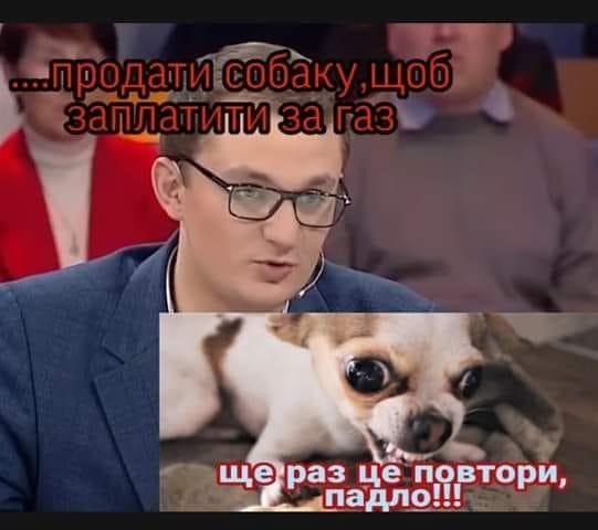 У соцмережах люто висміяли нардепа Брагара, який запропонував пенсіонерці розрахуватися за газ собакою 106