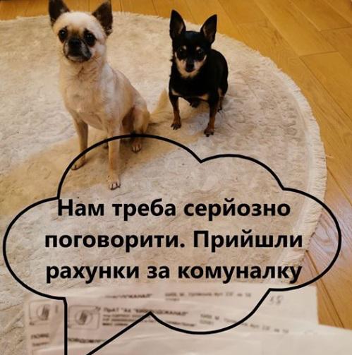 У соцмережах люто висміяли нардепа Брагара, який запропонував пенсіонерці розрахуватися за газ собакою 116
