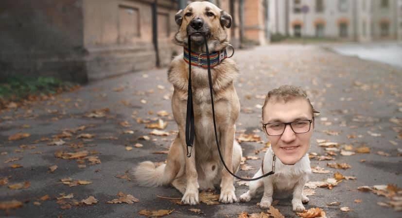 У соцмережах люто висміяли нардепа Брагара, який запропонував пенсіонерці розрахуватися за газ собакою 118