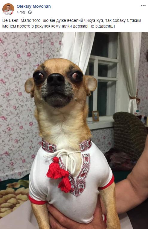 У соцмережах люто висміяли нардепа Брагара, який запропонував пенсіонерці розрахуватися за газ собакою 122