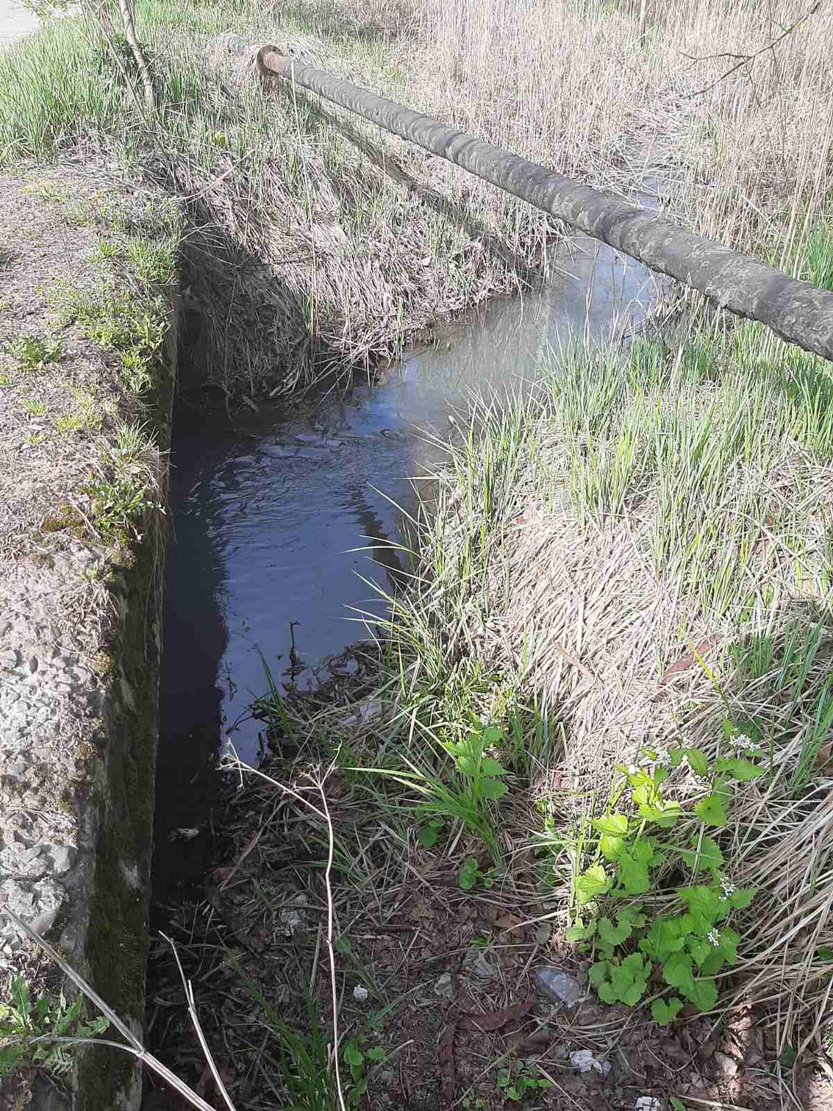 У Калуші з'ясовують, чому річка Млинівка змінила колір 1