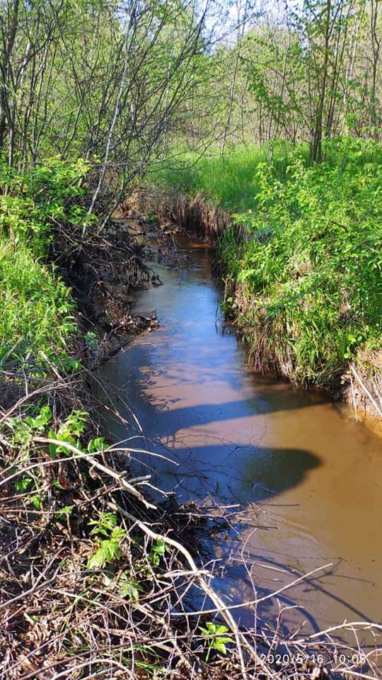 На Долинщині в річку потрапила нафта 5