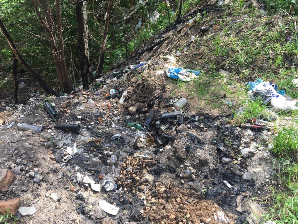 В селі на Рогатинщині люди борються зі стихійними смітниками, а влада скидає відходи в кар'єр 1
