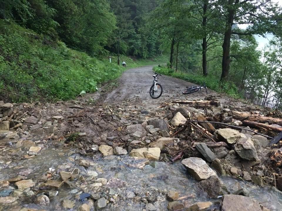 Повалені дерева та затоплені вулиці: на Верховинщині ліквідовують наслідки негоди 6