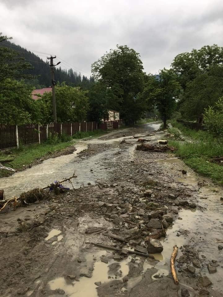 Повалені дерева та затоплені вулиці: на Верховинщині ліквідовують наслідки негоди 3