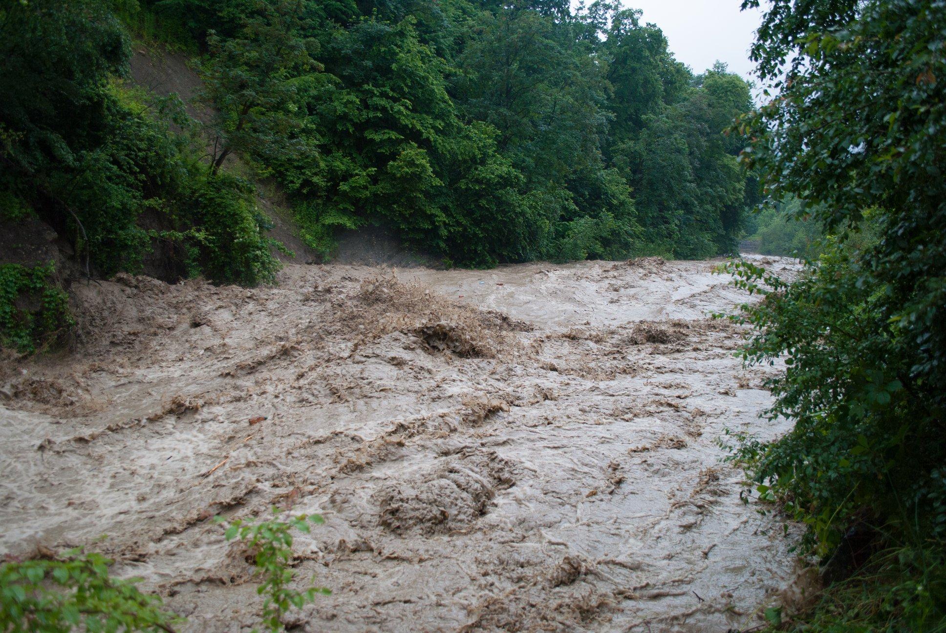 Затоплені дороги, зруйновані кладки, сміття: Черемош вийшов з берегів 8