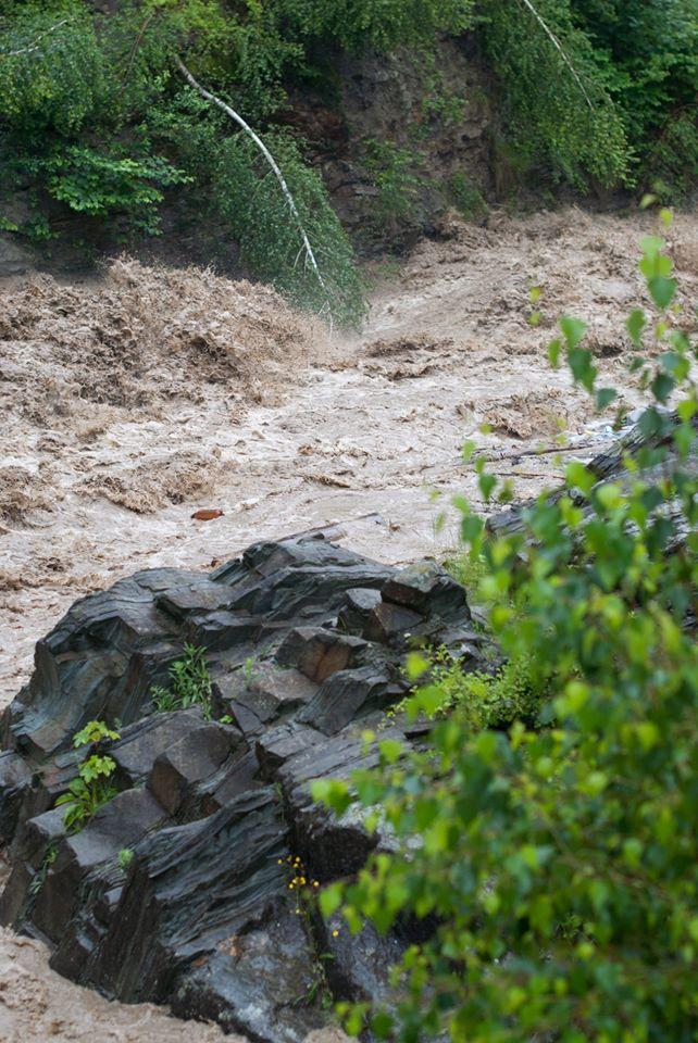 Затоплені дороги, зруйновані кладки, сміття: Черемош вийшов з берегів 5
