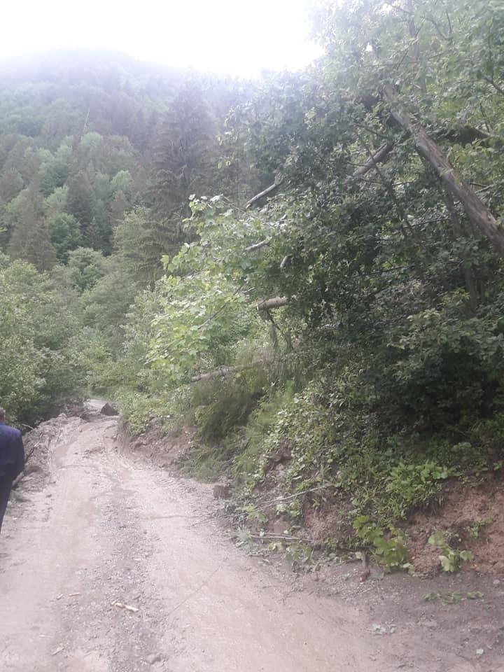 На дорогах Прикарпаття через зливи сталися зсуви - відрізали 4 села 8