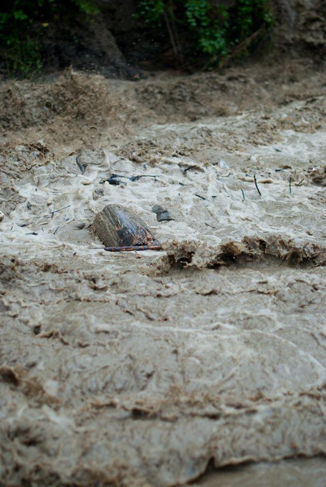 Затоплені дороги, зруйновані кладки, сміття: Черемош вийшов з берегів 6