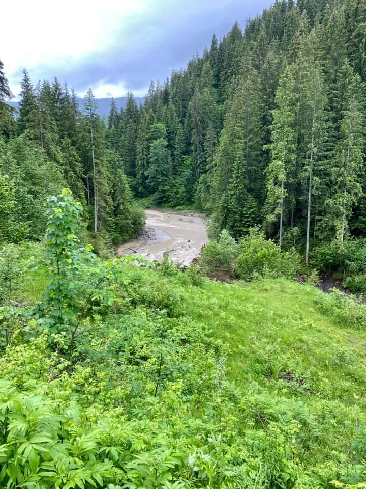 Через зсуви зникло озеро Криве у Карпатах 2