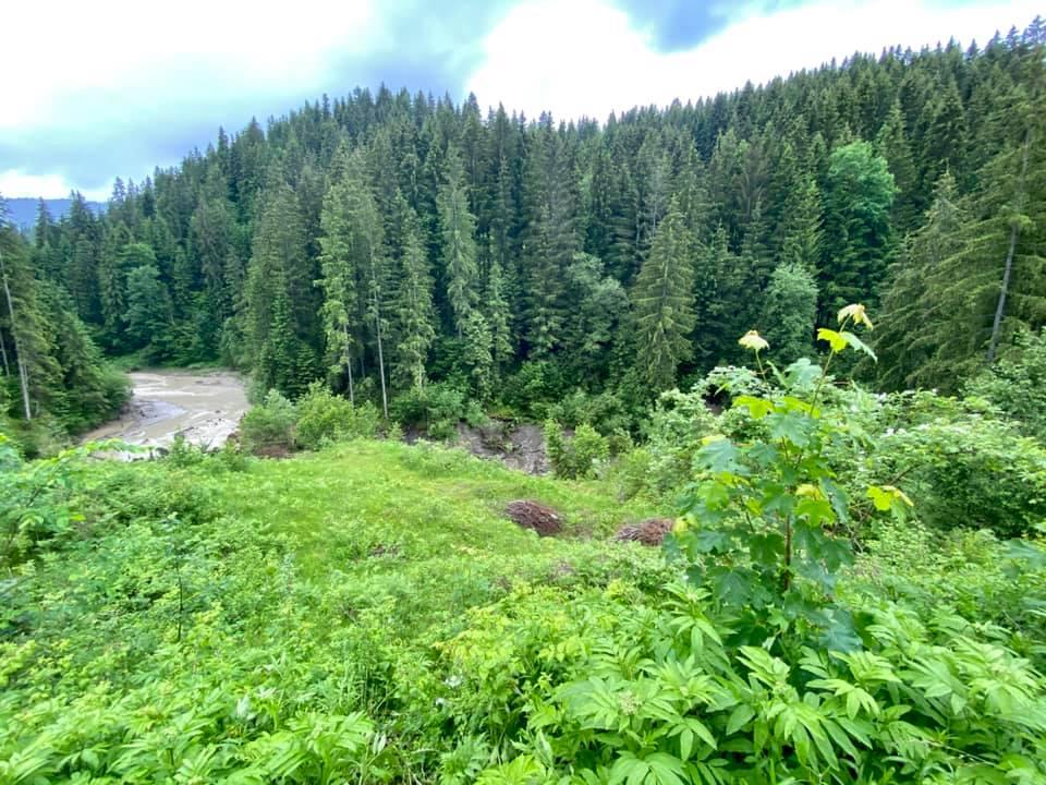 Через зсуви зникло озеро Криве у Карпатах 3