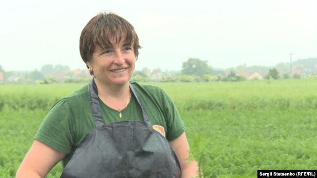 Чеські фермери готові оплачувати робітникам з Прикарпаття тести на COVID-19 2