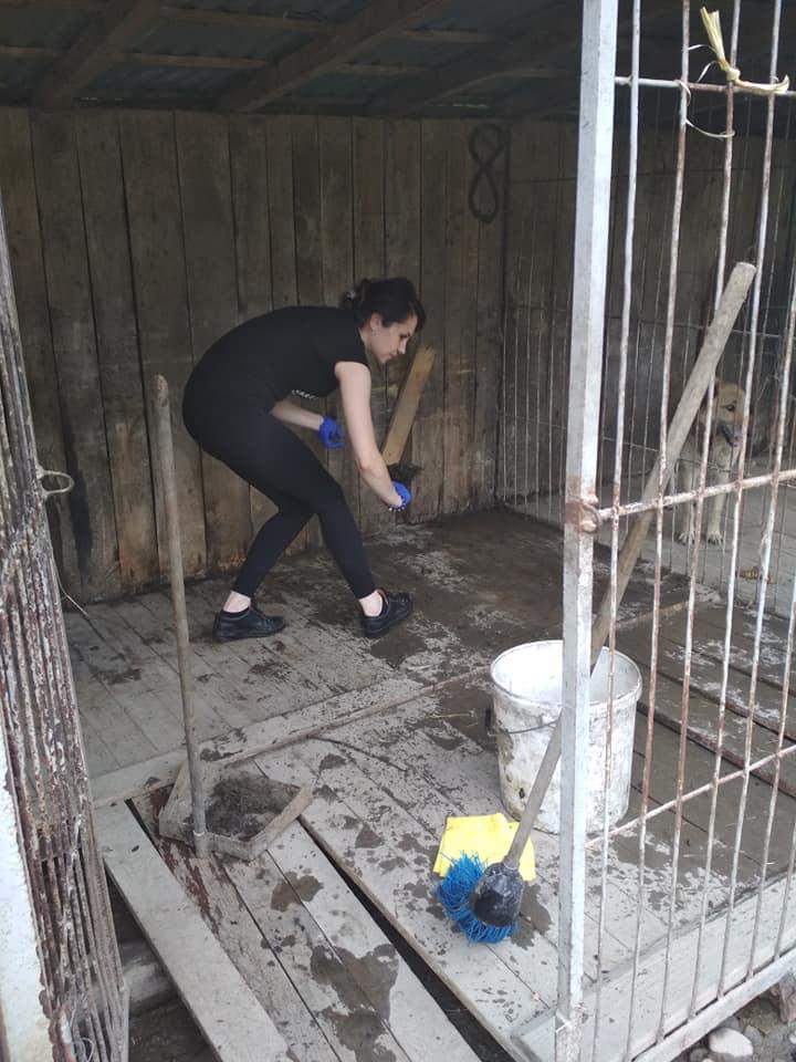 """Волонтери відновлюють """"Дім Сірка"""" у Калуші 4"""