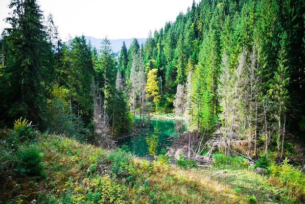 Через зсуви зникло озеро Криве у Карпатах 5