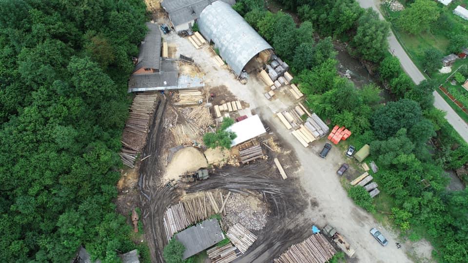 У лісгоспах Прикарпаття масові обшуки у справі про незаконну вирубку лісу. ФОТО 5