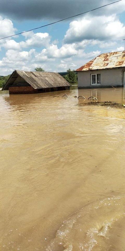 У Нижневі Дністер затопив будинки