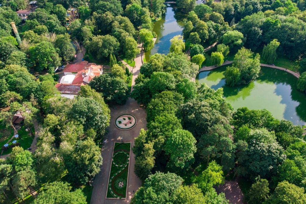 Франківська оаза: міський парк з висоти птахів 10