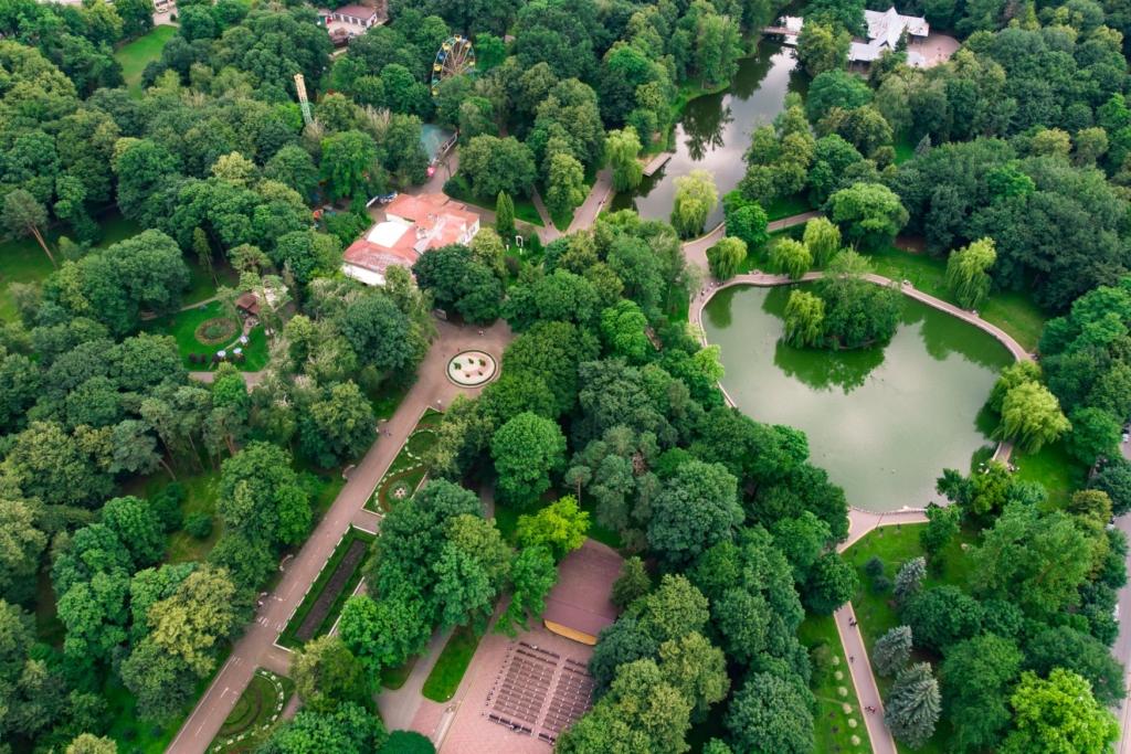 Франківська оаза: міський парк з висоти птахів 16