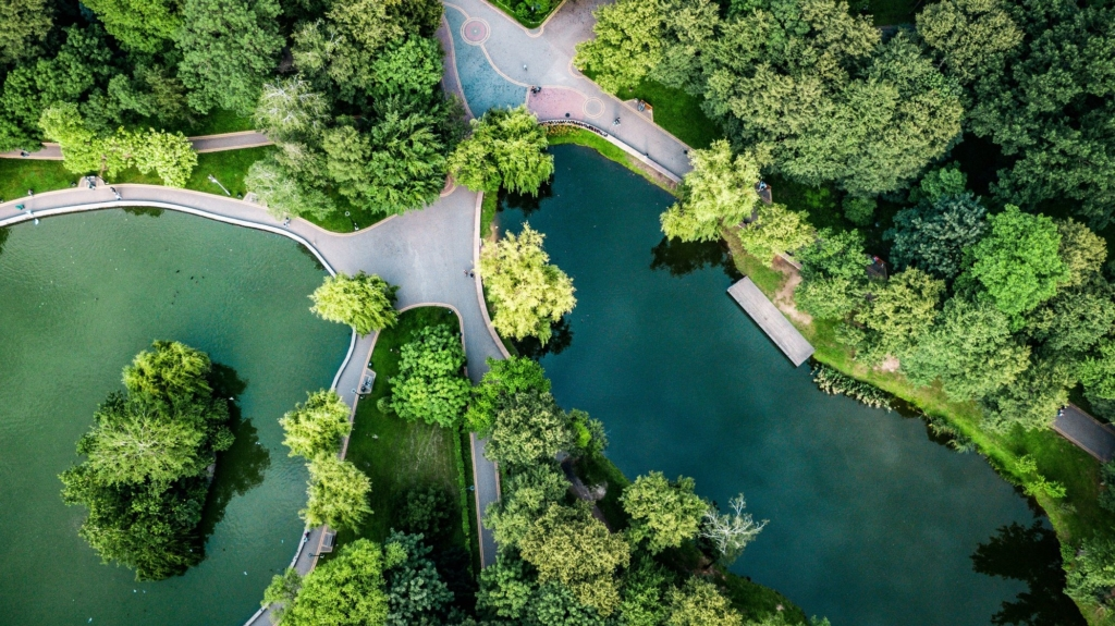 Франківська оаза: міський парк з висоти птахів 8