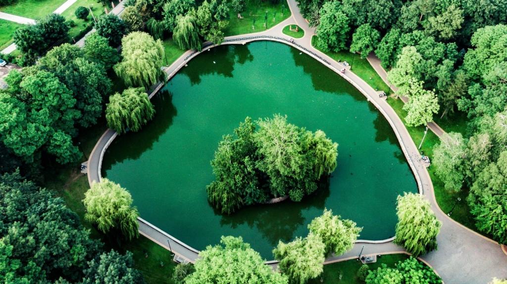 Франківська оаза: міський парк з висоти птахів 6