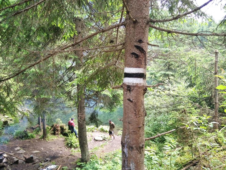 У Карпатах відновили маркування туристичного маршруту з Осмолоди на хребет Аршиця 3