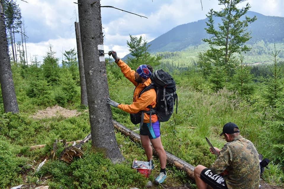 У Карпатах відновили маркування туристичного маршруту з Осмолоди на хребет Аршиця 2