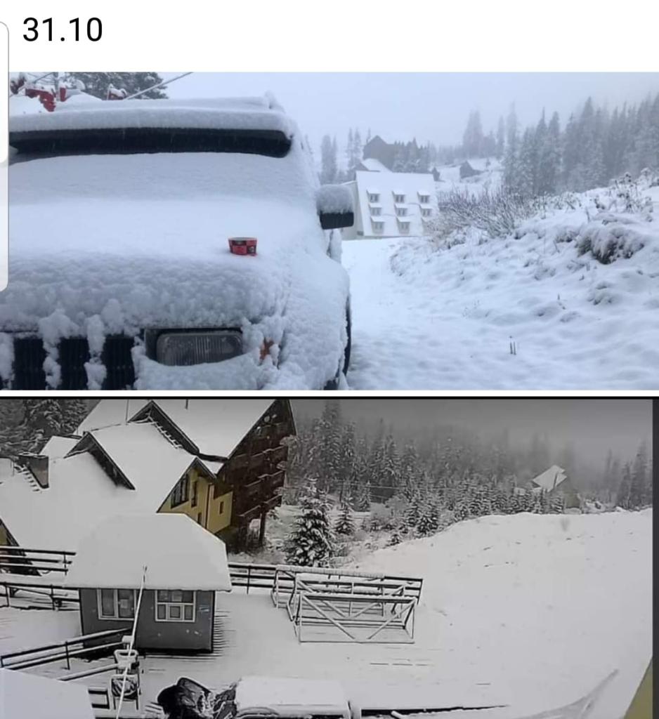На Прикарпатті випав сніг. ФОТО, ВІДЕО 1