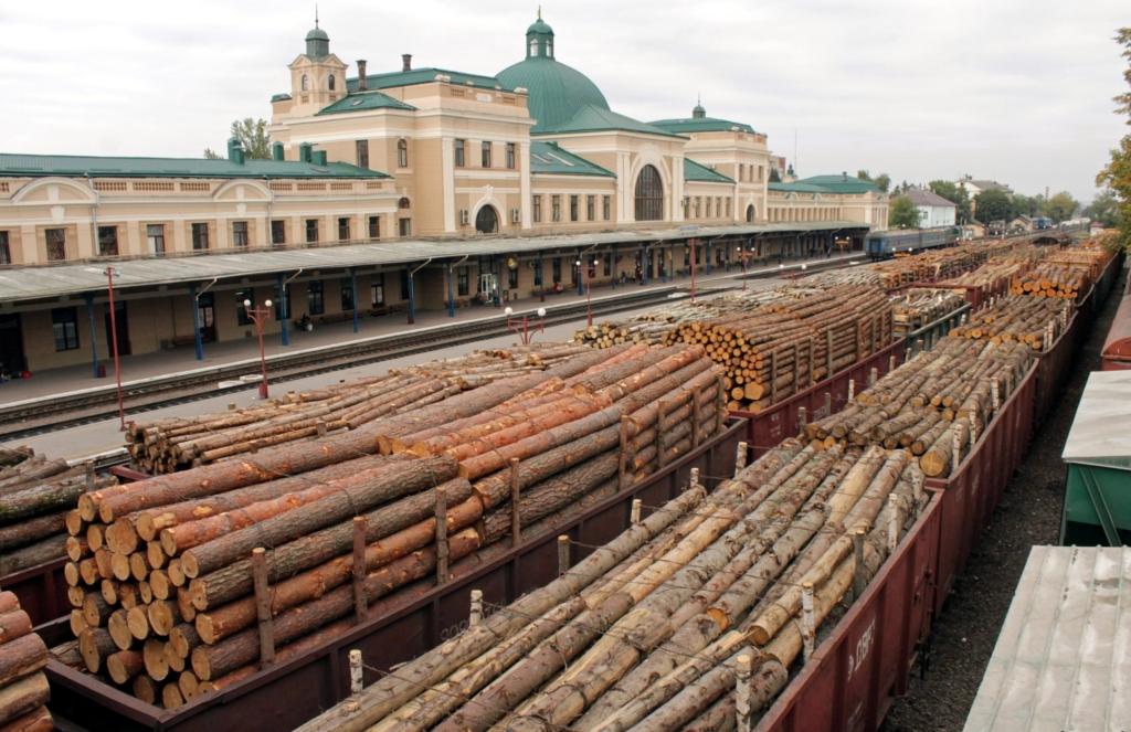 Україна експортує кругляк у вигляді дров