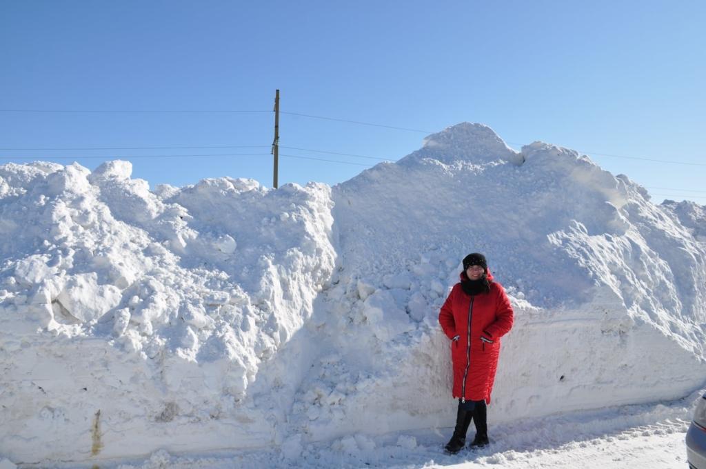 Чотири години безнадії: як бельгійця з дружиною зі снігової пастки на Городенківщині визволяли 1