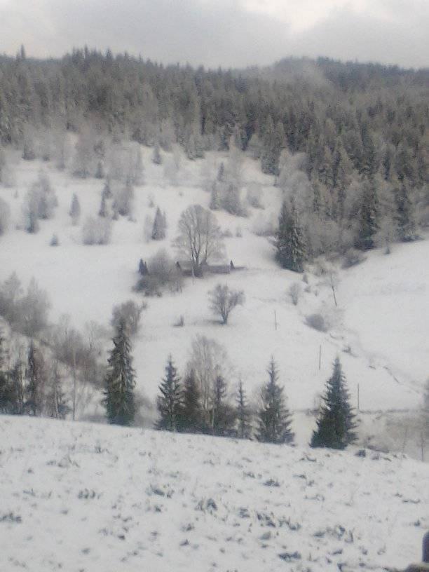 8 травня на Прикарпатті випав сніг 2