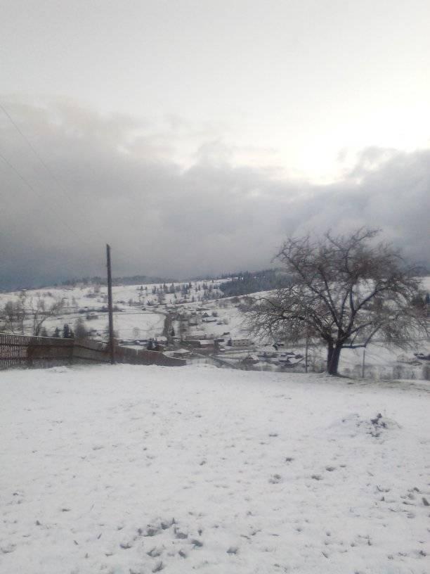 8 травня на Прикарпатті випав сніг 3