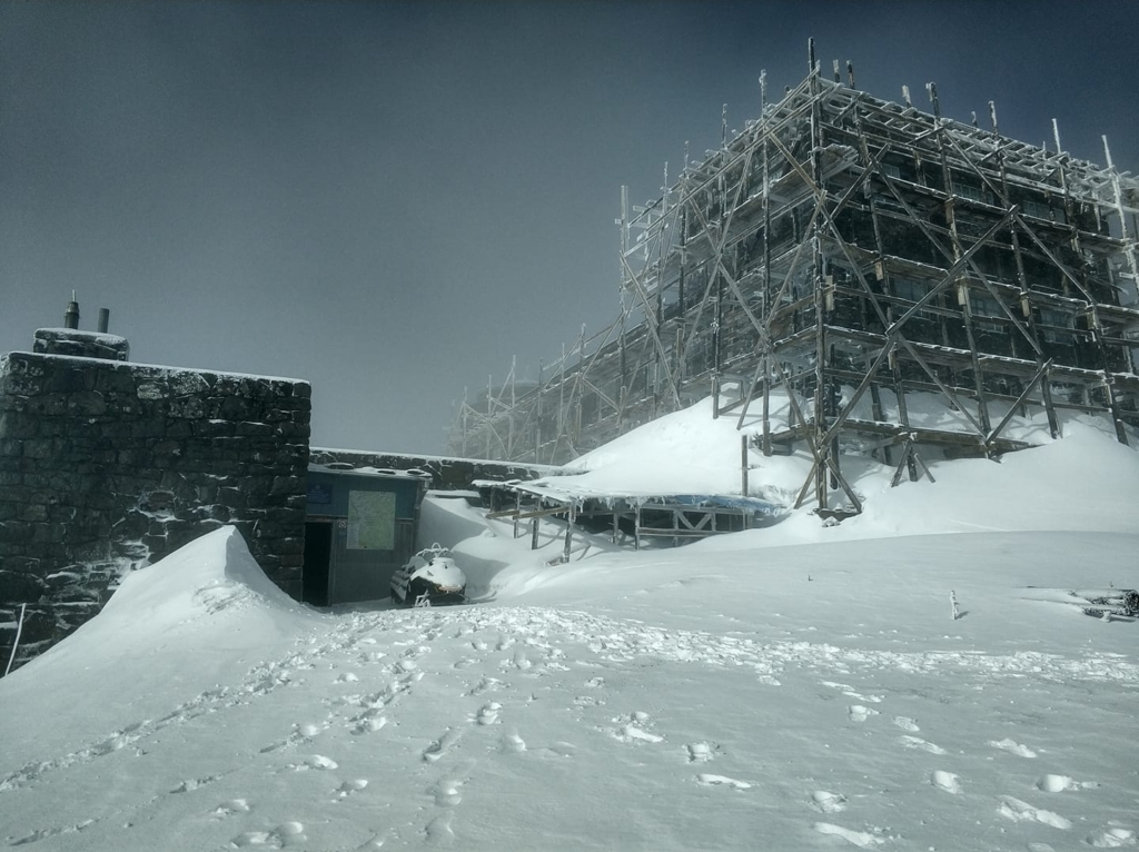 8 травня на Прикарпатті випав сніг 1