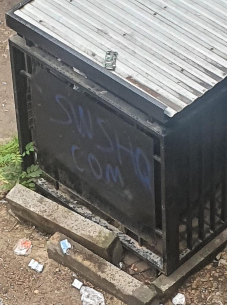 У мережі засвітили молодиків, які залишали рекламу наркотиків на гаражах і будинках Франківська 1