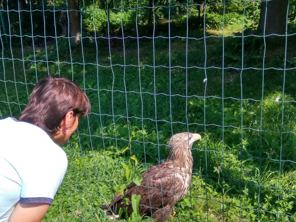Галицький НПП прийняв екскурсію з геріатричного пансіонату